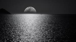 100 black moon white and black moon with black skies and