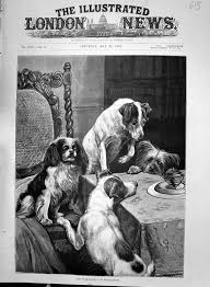 dogs at dinner table old antique print 1892 humming top puppy dogs dinner table house