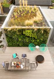 a wild garden leaps off the walls of this backyard build dwell