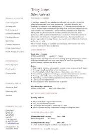 Written Resume Examples by 7 Best Functional Resume Template Images On Pinterest Functional