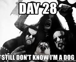 Black Metal Meme Generator - day 28 still don t know i m a dog black metal dog meme generator