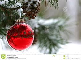 picture collection outdoor tree ornaments for christmas all can