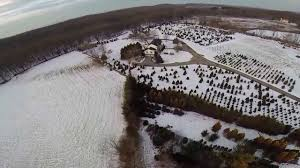 aerial view of the langeraap christmas tree farm sparta nj youtube
