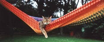 handmade hammocks september 2012