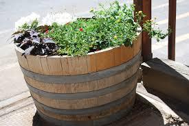 garden design garden design with a whiskey barrel planter can and