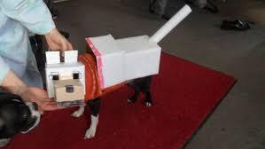 minecraft costumes minecraft dog costume 7 steps