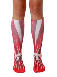womens size 12 boot socks puppy knee high socks must i want that