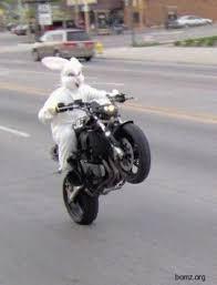 Motorcycle Meme - create meme easter bunny easter bunny motorcycle motorcycles