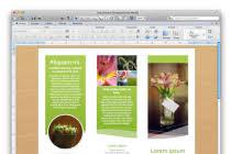 mac brochure templates https gbttc info wp content uploads 2018 02 flye