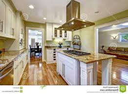 kitchen room best island stove top with white cabinet lamp and