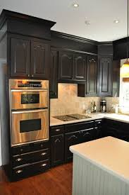 Black Painted Kitchen Cabinets by 141 Best Kitchens With Black Appliances Images On Pinterest