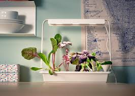 ikea launches indoor garden that can grow food all year round the