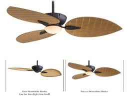 ceiling fan outdoor blades outdoor ceiling fan with clear blades lowes also light trends porch