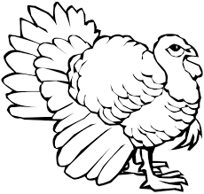 promising turkey feathers coloring pages thanksgiving colouring for