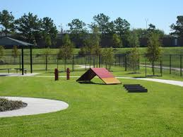 7421 On Frankford Floor Plans by 86 Best Dog Parks Images On Pinterest Dog Park Apartments And