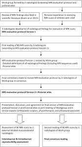 the copenhagen standardised mri protocol to assess the pubic