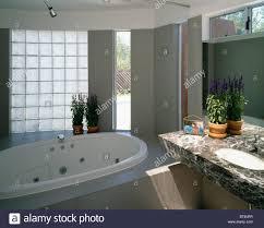 Spa Like Bathroom Colors Top 71 Superlative Oval Spa Bath And Glass Brick Window In Modern