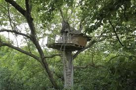 chambre d hote cabane dans les arbres domaine de canon cabanes de