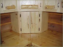 Superior Kitchen Cabinets by Door Hinges Staggering Exterior Cabinet Hingesc2a0 Picture