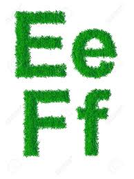 green grass alphabet big and small letters e f royalty free