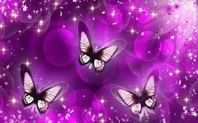 purple pictures purple wallpapers 222 hd desktop background