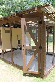 formans folly backyard chickens