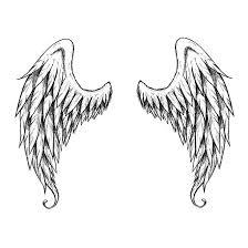 19 wings designs