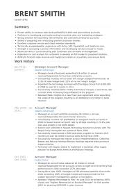 Sample Resume For Account Executive by Download Account Manager Resume Haadyaooverbayresort Com