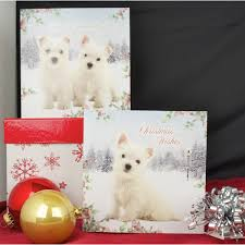luxury westie christmas cards west highland terrier xmas gifts