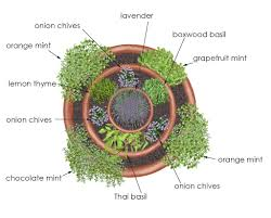 Potted Herb Garden Ideas Garden Ideas Herb Container Garden Brothers Pet Lawn
