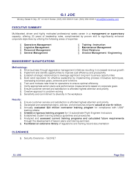 A Good Resume Example by Executive Summary Example Resume Berathen Com