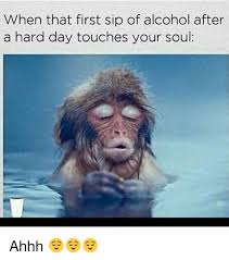 Ahhh Meme - when that first sip of alcohol after a hard day touches your soul