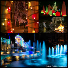 Botanical Gardens Hotel Atlanta S Best Light Displays Loews Hotel