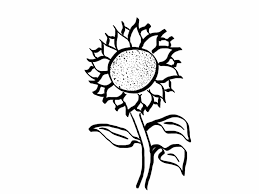 jeannelking com how to draw a good enough sunflower