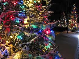 beautiful christmas tree decoration light snow wallpaper