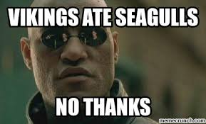Viking Memes - meme 30