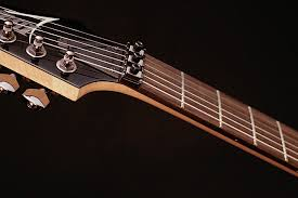 electric guitars rg rg421 ibanez guitars