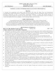 Internal Auditor Resume Audit Summary Template Masir