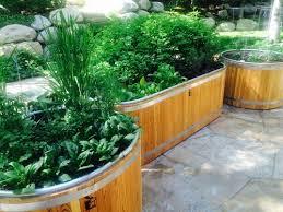Vegetable Container Garden - my favorite veggie container garden u2014 liztv