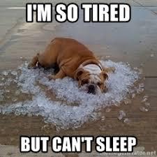 I M So Tired Meme - so tired meme 28 images tired puppy memes www pixshark com