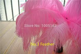 Ostrich Feather Centerpieces Wholesale by Popular Pink Ostrich Feathers Centerpieces Buy Cheap Pink Ostrich