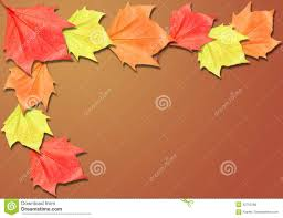halloween background leaves brown fall background border with copyspace stock photo image