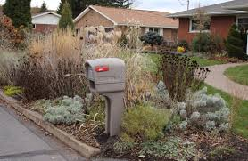 Mailbox Flower Bed Sorta Like Suburbia More Than You Ever Wanted To Know About My