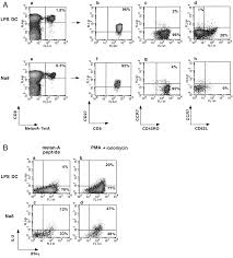 mature dendritic cells prime functionally superior melan a