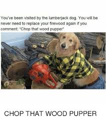 Lumberjack Meme - you ve been visited by the lumberjack dog you will be never need to