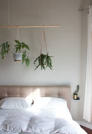 best 25 indoor plant hangers ideas on pinterest plant hanger
