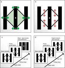 perceptual benefits of objecthood jov arvo journals
