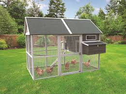 innovation pet extra large green walk in coop up to 15 chickens