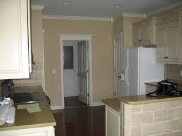 macadamia paint color for living room u2014 novalinea bagni interior