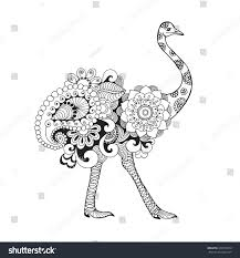 ostrich bird black white hand drawn stock vector 338149670